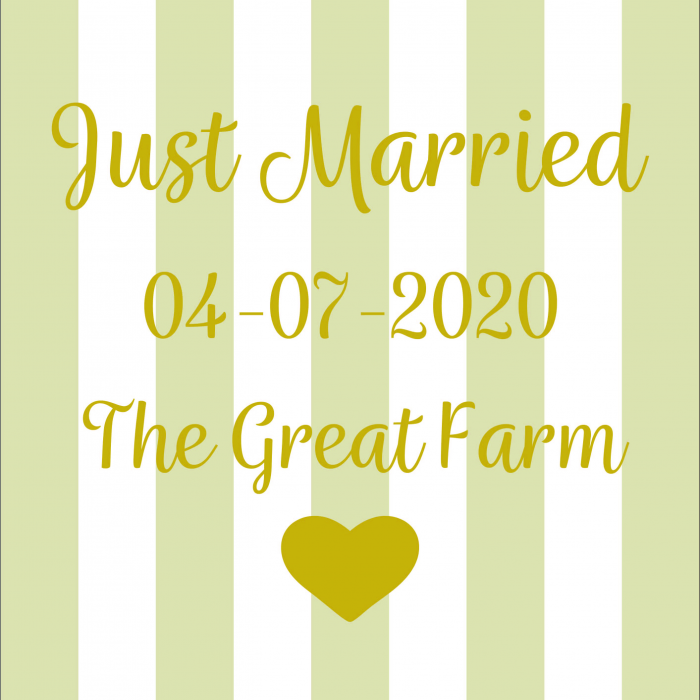 Pet Deckchair  with Just Married - Customisable - Taupe