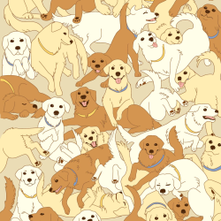 Golden Retrievers print for Croyde - Classic