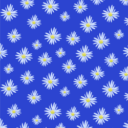 Michaelmas Daisy print for Elbury - Junior