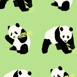 Panda print for Elbury - Junior