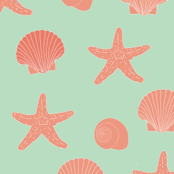 Seashells print for Croyde - Classic
